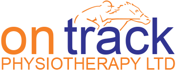 On Track Physiotherapy Ltd – chartered physiotherapist specialising in veterinary physiotherapy service for racehorses